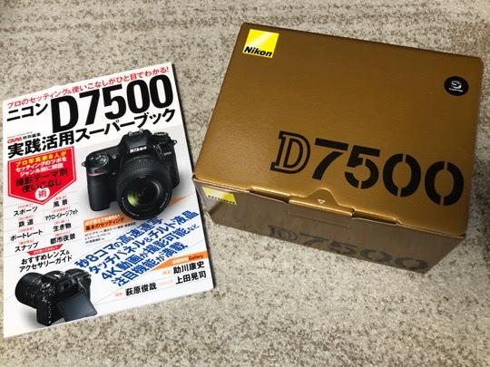 5729A50B-709F-43AB-A332-B2EBA46B612F.jpeg